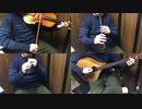 プリコネR「高みを目指して」をアイリッシュ楽器等で演奏して...