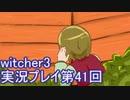 探し人を求めてwitcher3実況プレイ第41回