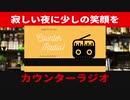 【雑談】カウンターラジオ#31