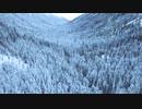 雪景色♪ 日浦裕一です(^o^)