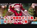 Fate/Grand Order ナイチンゲール〔サンタ〕 マイルーム クリア後追加ボイス集+開放プロフィール集