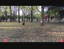 【代々木ハレオフ】アフター3