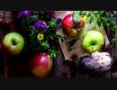 【GUMI】 林檎の追憶、偽りの彫像 【変拍子・11拍子】