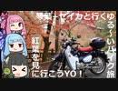 【納車報告】琴葉+セイカと行くゆる~いバイク旅 紅葉を見に行こうYO!【カブC125】