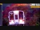 【のら】紅葉の名松線 2019