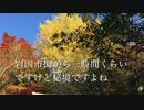 山口県百名山 周防岩国藩 吉川公の祈願所 阿品弥山の紅葉と山並み 1