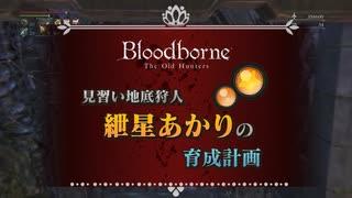 【Bloodborne】あかりちゃんで3デブマラソン.dbsps2