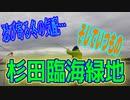 釣り動画ロマンを求めて 310釣目(杉田臨海緑地)