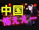 中国包囲網。麻生財務大臣が外貨を締め出し。