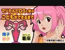 【魔法少女!自主制作アニメ】マジカルピロコ