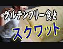 大豆プロテインスイーツ&チューブサイドレイズ・スクワット