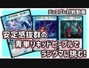 【実況】安定感抜群の青単リキッドピープルをご紹介!【デュ...