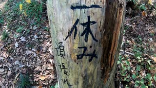 RTA リアル登山アタック 三毳山