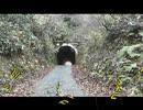 ちょこっトレッキング トンネルの上の廃道 (焼山)