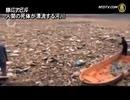 ブタ・アヒル・ヒトの死体であふれた川