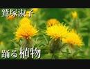 鷲塚淑子 踊る植物 | 新絶景タイムスケイプ | 8K Timelapse dancing plant | BS4K8K | NHK