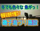 釣り動画ロマンを求めて 314釣目(磯子海づり施設)