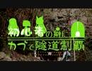 【東北姉妹車載】初心者の癖にカブで隧道制覇 14本目