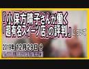 『週刊誌に撮られた 小保方晴子さんが…』についてetc【日記的動画(2019年12月29日分)】[ 273/365 ]