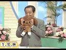 釘宮理恵 ツンデレカルタ3D