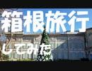 【現地調査】箱根旅行してみた。【写真と動画】