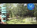 mono-Cebu島旅行-part05~チョコレートヒルズ~