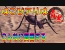 【モンハン/mhwib】2人実況プレイpart4  圧倒的獄狼竜ジンオウガ亜種完全討伐物語part4(モンスターハンターワールドアイスボーン)