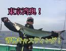 東京湾奥!サワラキャスティングに挑戦!【もっち釣動組合♯6...