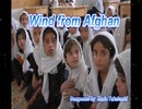 Wind from Afghan