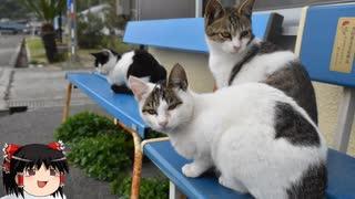 【ゆっくり】時雨梓の島猫レポート Vol.06【旅動画】