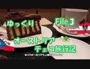 ゆっくりオーストリア・チェコ旅行記 File.3 ウィーンのケーキと夜景