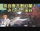 おバイク!奈良奥吉野紅葉1 みたらい渓谷【GLADIUS】