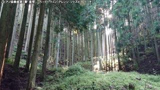 【生海月】なまくらじお【2020.1.12】