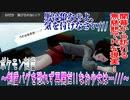 【実況】ポケモン剣盾~剣盾バグを恐れず再開だ!!なお少女は…///~Part2