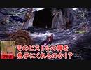 【MHWIB】頬を叩いて壁にドーン!【黒轟竜】Part12