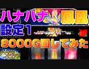 【ハナハナ鳳凰】設定1のハナハナを8000G回してみた。【設定1part3】