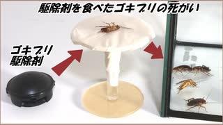 「ゴキブリ駆除剤」を食べたゴキブリの死がいをゴキブリの群れの中に入れたらもっと凄まじい結果になった。