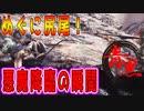【モンハン/mhwib】編集縛り実況プレイpart7| 圧倒的獄狼竜ジンオウガ亜種完全討伐物語(モンスターハンターワールドアイスボーン)