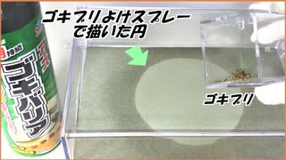 「ゴキブリ除けスプレー」で書いた円の中にゴキブリを投入したら驚きの結果になった。