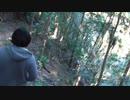 公園粥、滝までの山道往復(おまけ)