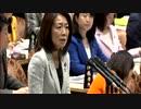 参院予算委立民徳永議員「武漢肺炎 日本国内の発生状況」詳細説明求める