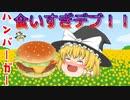 【ゆっくり茶番】ハンバーガーの食いすぎには注意!