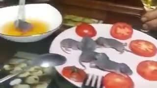 ネズミ 生きたまま 中国 ネズミを生きたまま食べる民族がいるらしい…衝撃の動画がこちらになります。