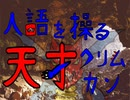 【ポケモン剣盾】①人語を操る天才クリムガン(終)