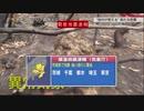 NHK緊急地震速報 20年2月1日
