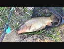 【釣り・Fishing】荒川温泉・温排水(荒川第一調整池排水門)で...