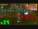 【小さな勇者の飲み実況】ゼルダの伝説 風のタクト HD part25【24歳フリーター】