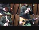 プリコネR「アクアリオス」をアイリッシュ楽器等で演奏してみた