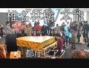 【都庁ピアノ】椎名林檎さんの「本能」弾いてみた。ストリートピアノ