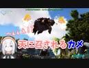 第94位:天に召されるカメを見送るアルス・アルマル